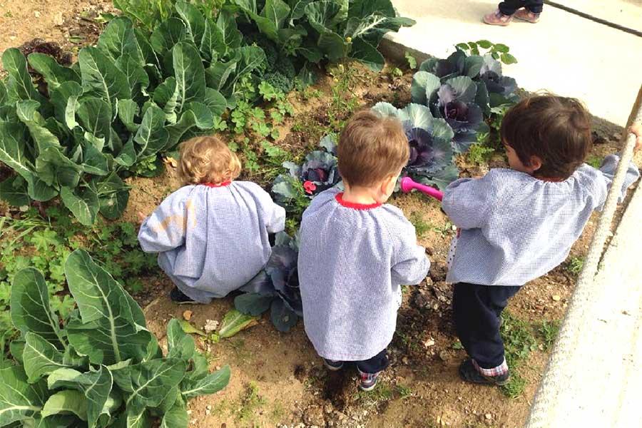 Niños en contacto con la naturaleza