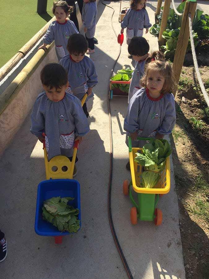 Niños con carretillas en el huerto